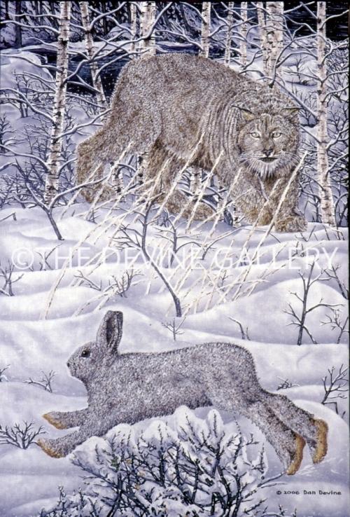 Hare-Raising-Experience-694x1024